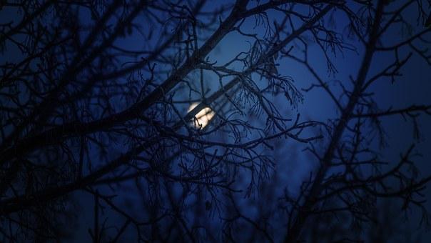Лунен хороскоп за днес 17 януари