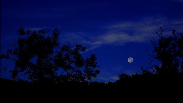 Лунен хороскоп за днес 6 февруари