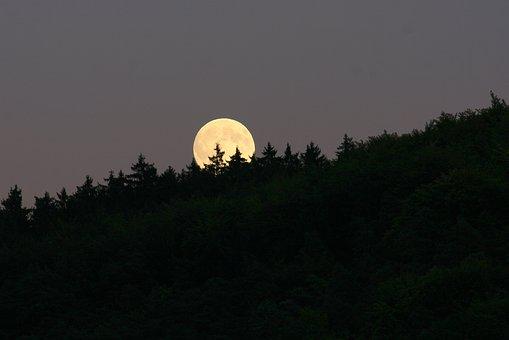 Лунен хороскоп за днес 15 октомври