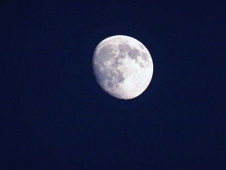 Лунен хороскоп за днес 11 ноември