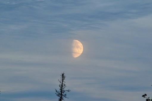 Лунен хороскоп за днес 6 ноември