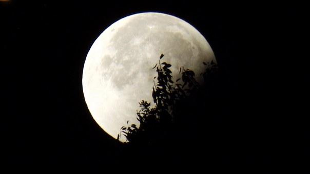 Лунен хороскоп за днес 4 февруари
