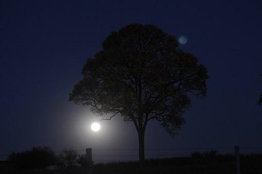 Лунен хороскоп за днес 8 февруари